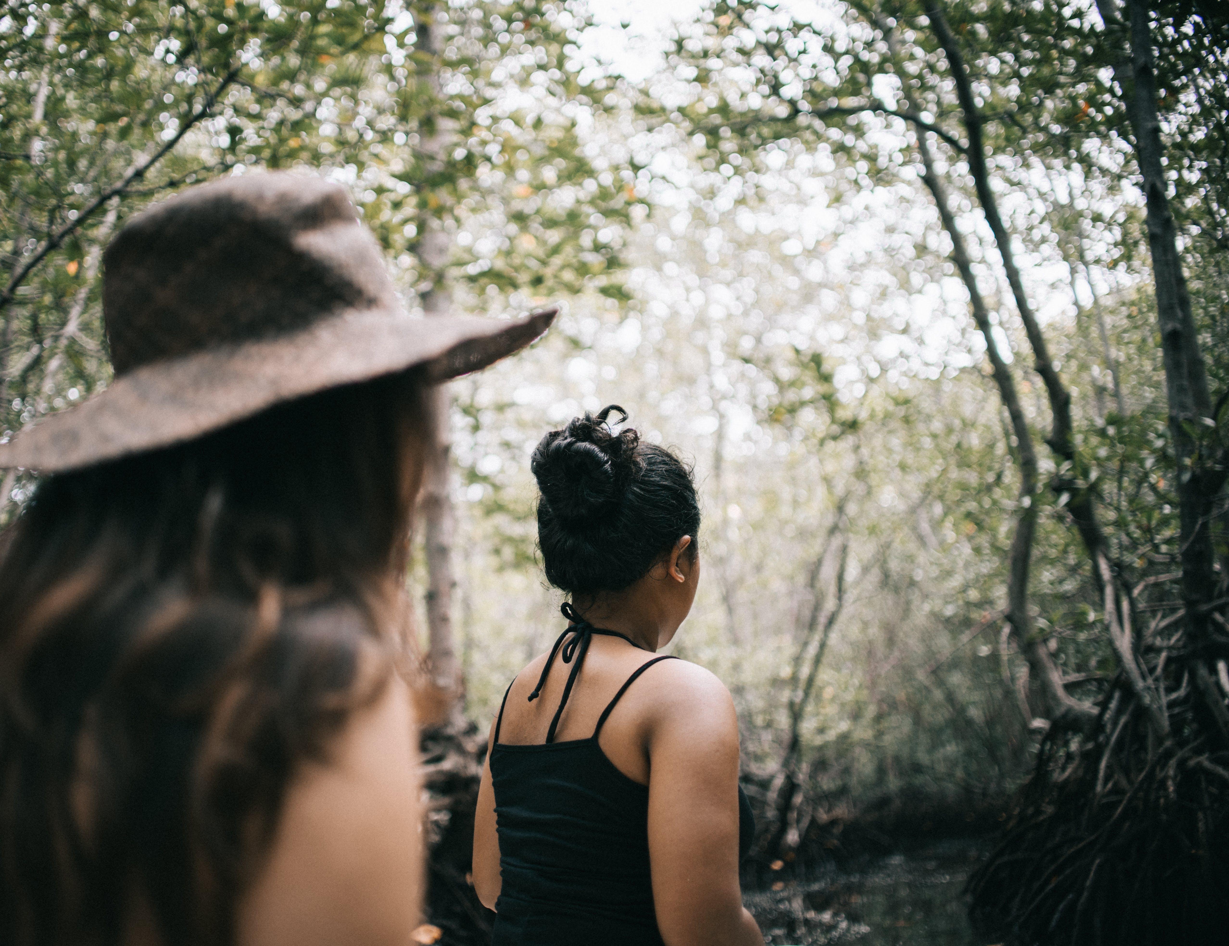 Foto stok gratis berbayang, fashion, hutan, istri
