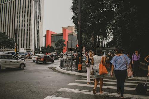 Fotos de stock gratuitas de acción, adultos, asfalto, brasil
