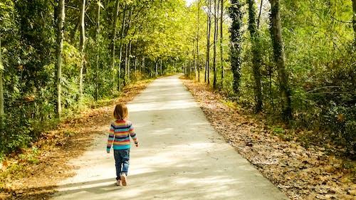 Безкоштовне стокове фото на тему «дерево, Дівчина, діти»