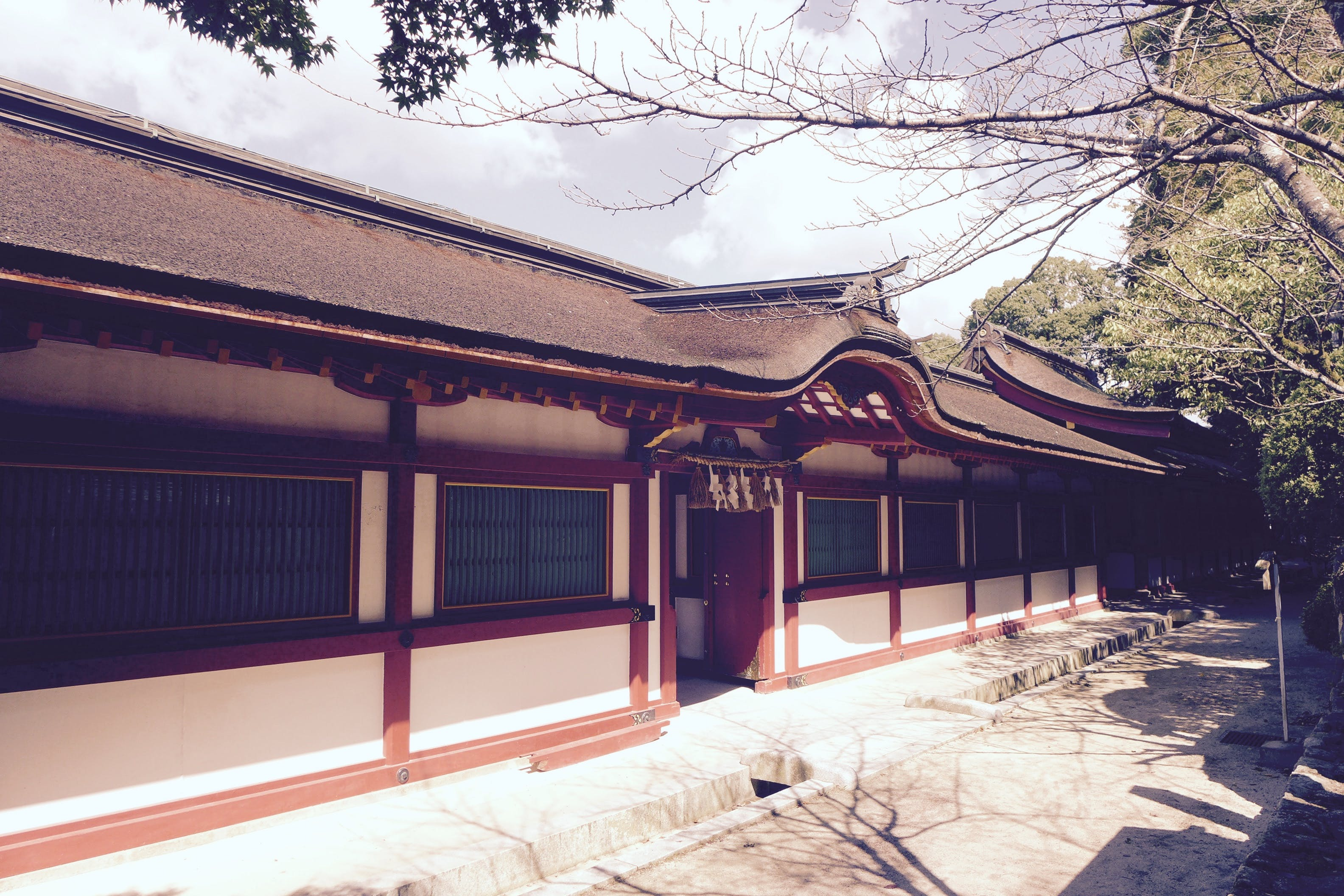 Free stock photo of buddhist temple