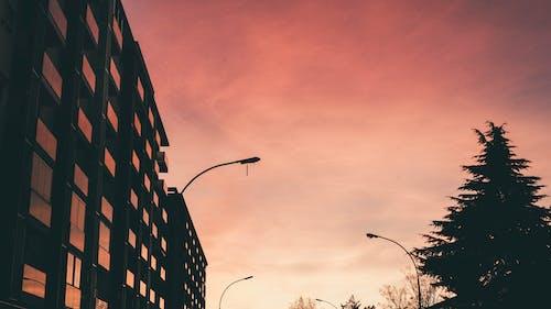 Základová fotografie zdarma na téma červená, karmínový, krajina, obloha