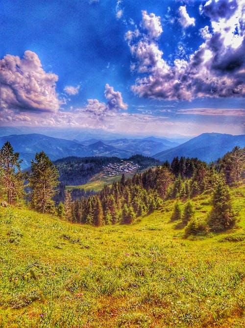 Foto stok gratis # kayu, #di luar rumah, #gambar hari ini, #gunung