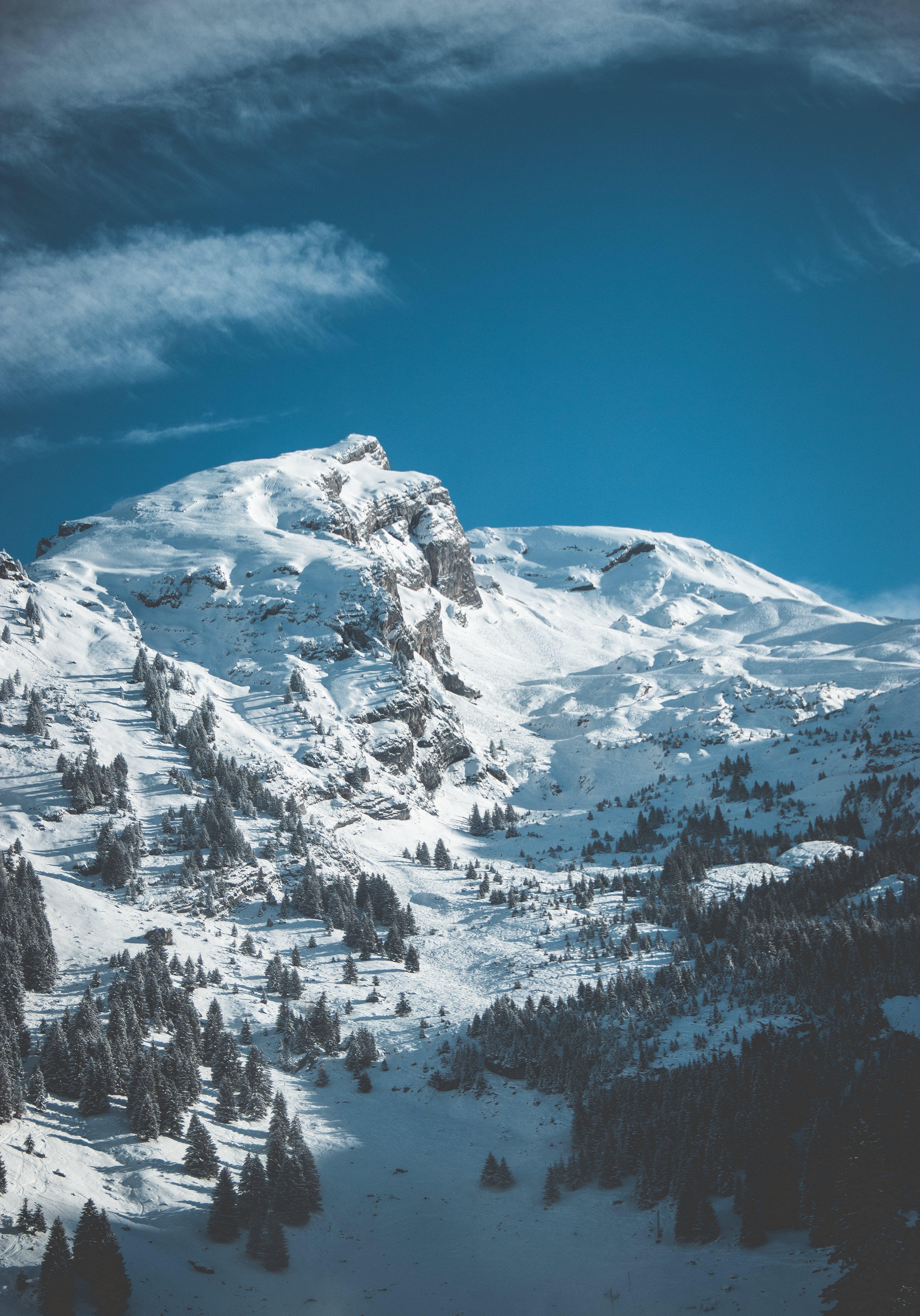 Kostenloses Stock Foto zu alpen, bäume, berg, blauer himmel