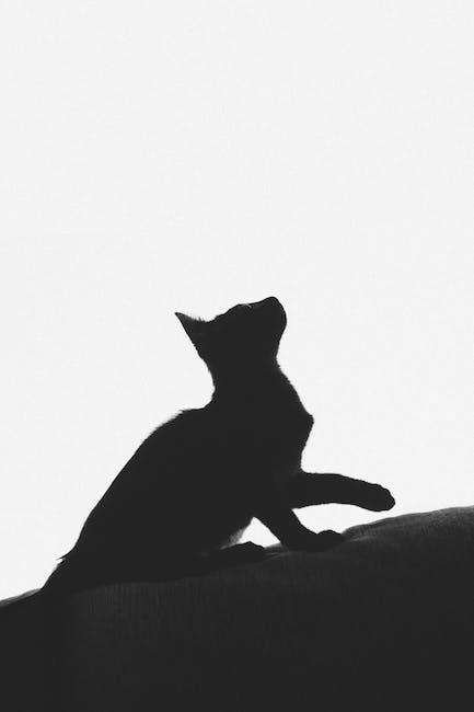 Black and white cat print textile