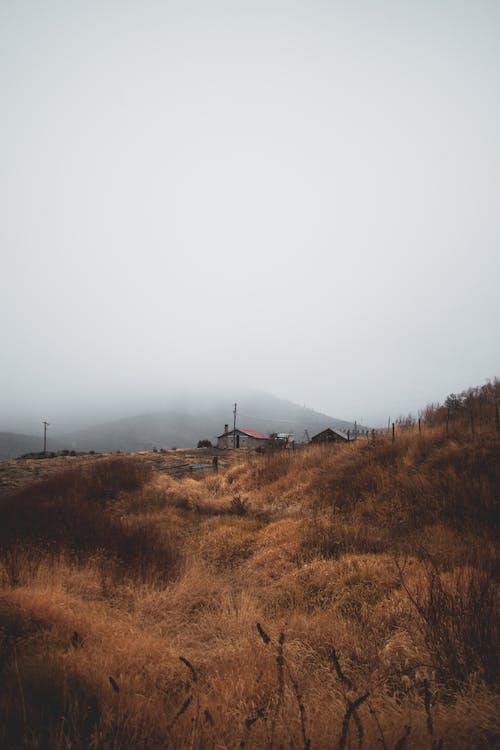 Photos gratuites de brouillard, brumeux, ciel, couvert