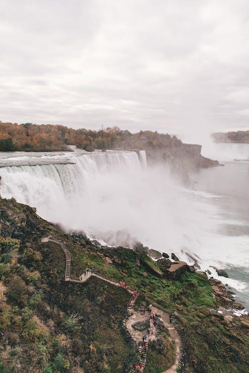 Photos gratuites de arbres, cailloux, cascade, cascades