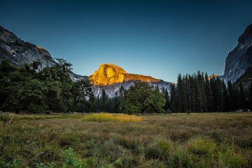 Kostnadsfri bild av bergen, bergstopp, dagsljus, gräs