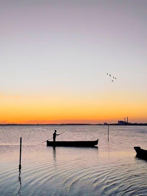 Gratis lagerfoto af aften, båd, bølger, bugt