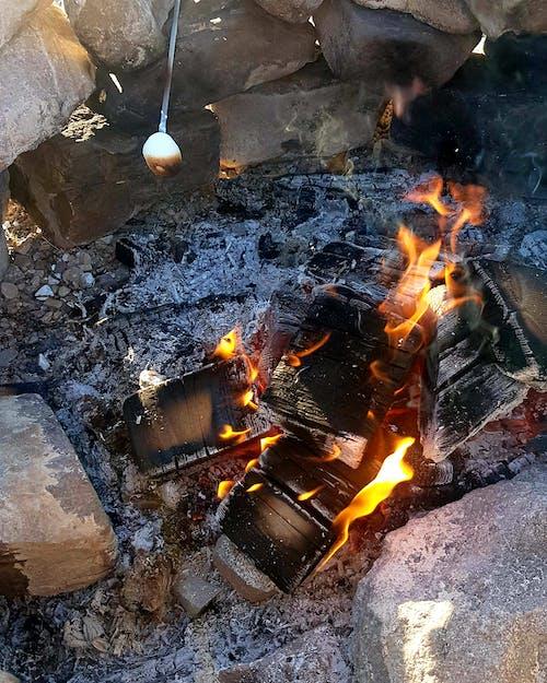 #dessert #marshmallow #fire #campfire #snores 的 免費圖庫相片