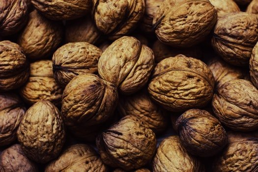 Free stock photo of nuts, walnuts