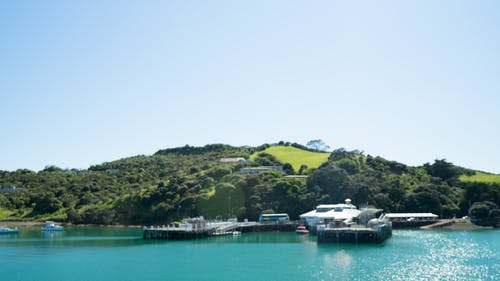 Free stock photo of waiheke island