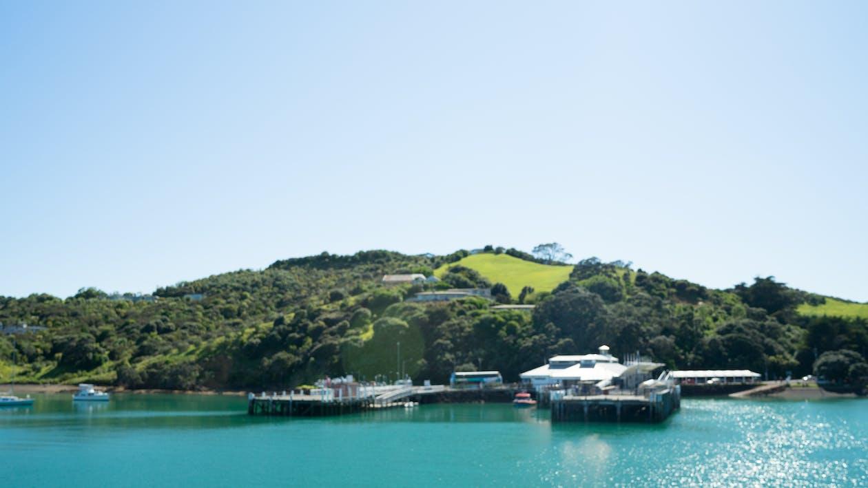 Foto profissional grátis de ilha waiheke