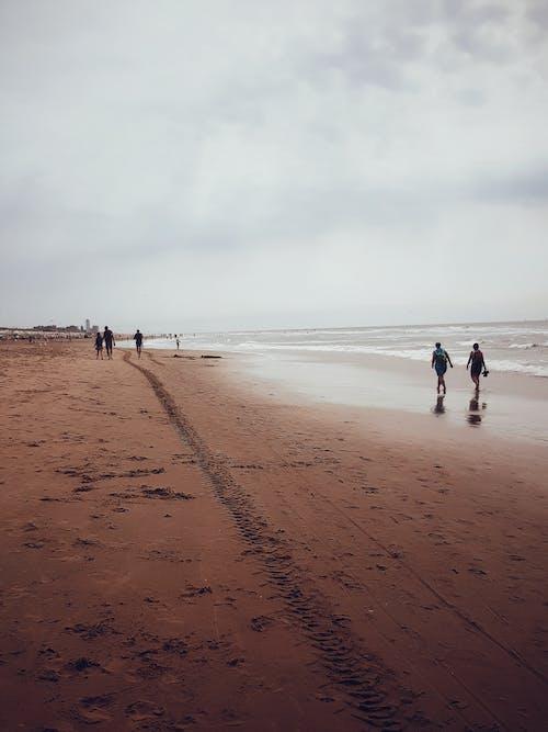 Foto profissional grátis de bloemendaal, com frio, frio, litoral