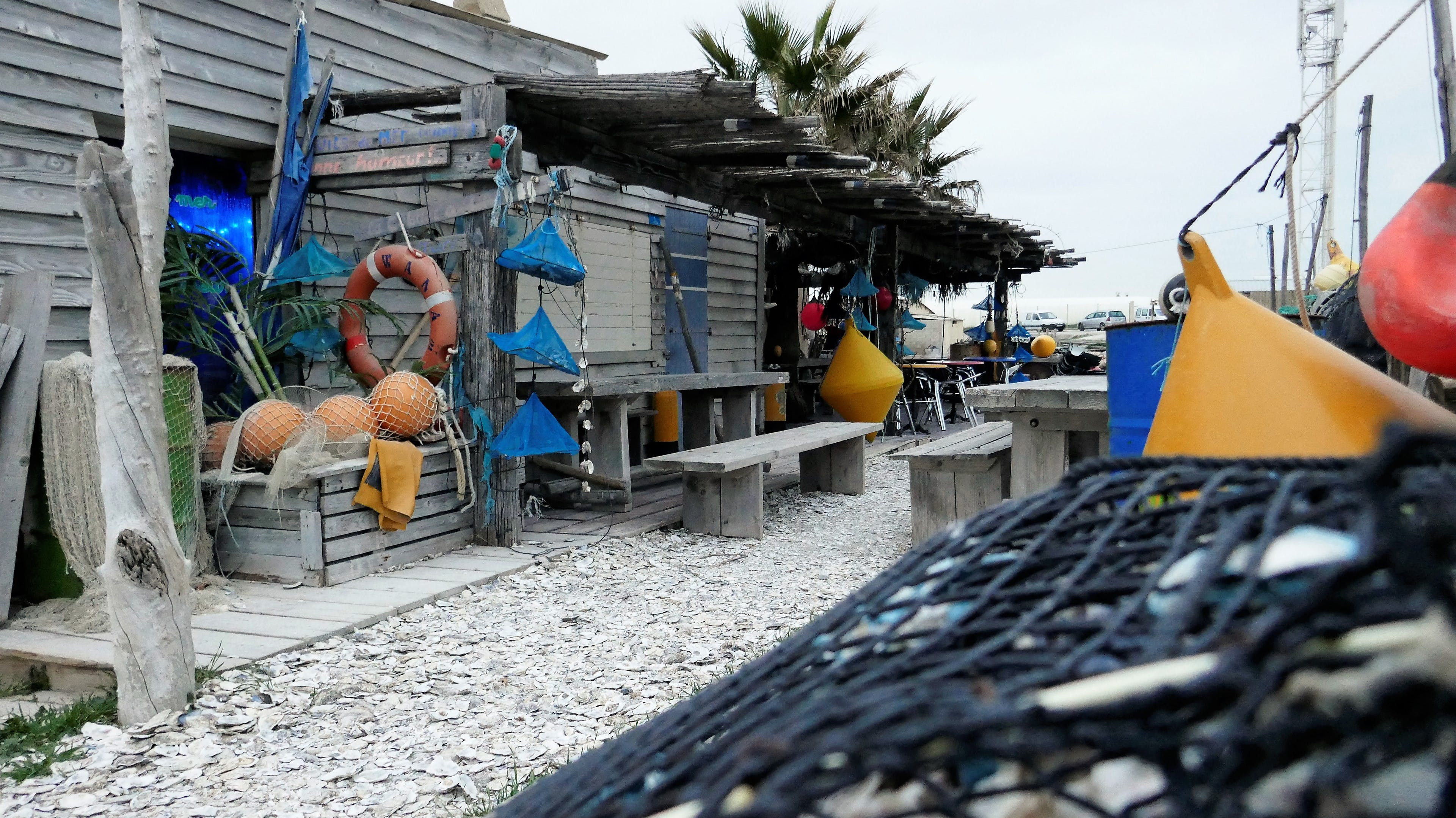 Free stock photo of oysters, seashell harbor, south of france, typical shed