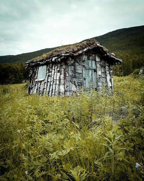 버려진, 버려진 건물, 잔디의 무료 스톡 사진