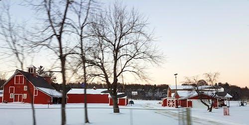 #farm #nature #sky #clouds #winter 的 免費圖庫相片