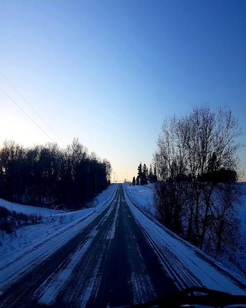 #road #nature #winter #snow #tree #sky 的 免費圖庫相片