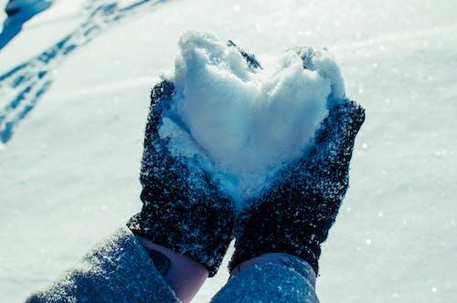 Fotos de stock gratuitas de corazón, corazón de nieve, invierno, nevar