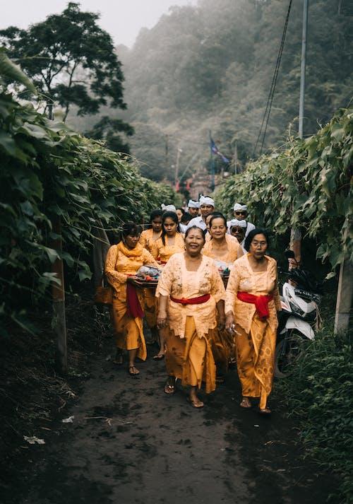 Foto stok gratis agama, Agama Buddha, bangsa asia, berkelompok