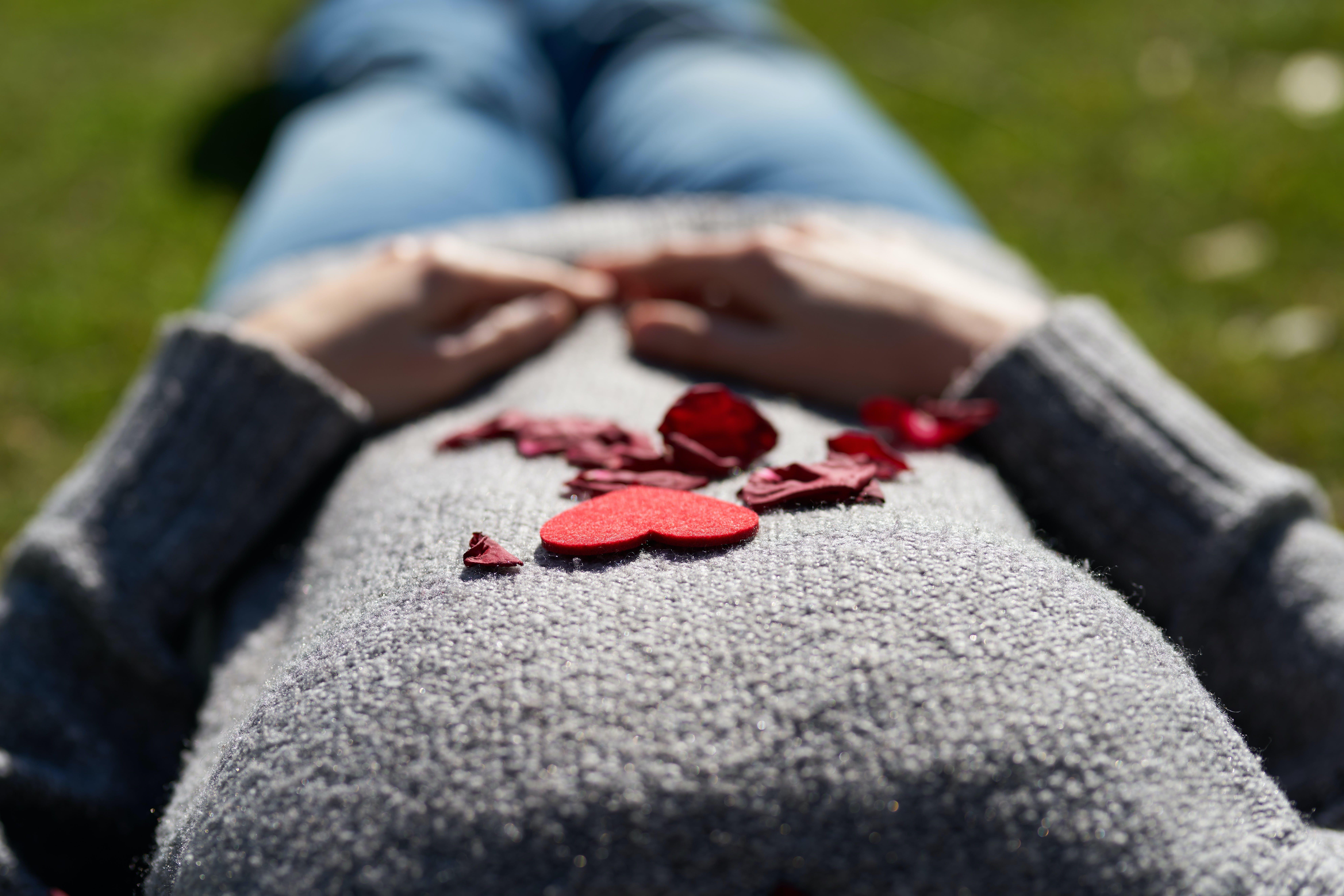 꽃잎, 손, 심장의 무료 스톡 사진