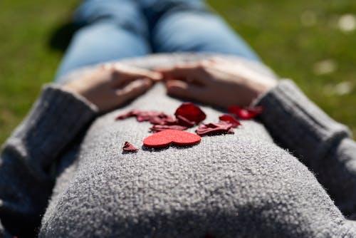 คลังภาพถ่ายฟรี ของ กลีบดอก, มือ, หัวใจ