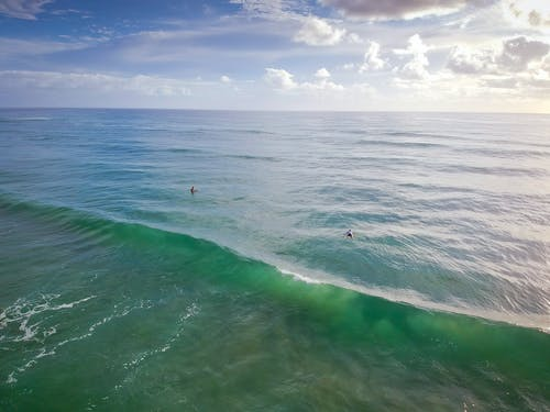 Aerial Photo of People Swimming in Sea