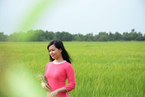 Бесплатное стоковое фото с женщина, зерновые, красивая, красивый
