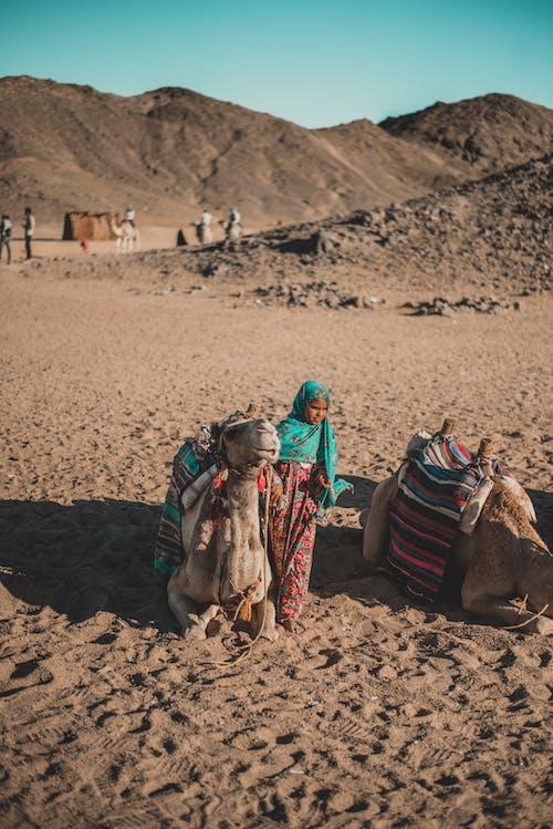 Camel Beside Child