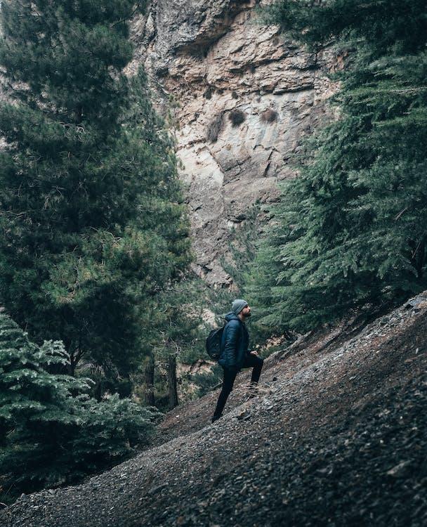 alpinismo, alpinista, andarilho