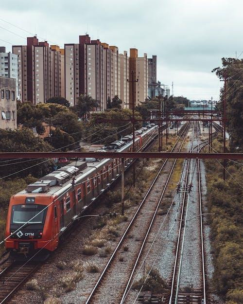交通系統, 公共交通工具, 城市, 火車 的 免费素材照片