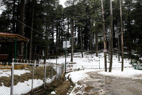Kostnadsfri bild av bergen, kulle station, snö, snö bilder