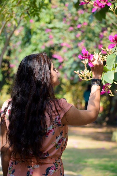 Darmowe zdjęcie z galerii z bukiet kwiatów, ciemnozielony, czarne włosy, piękne kwiaty