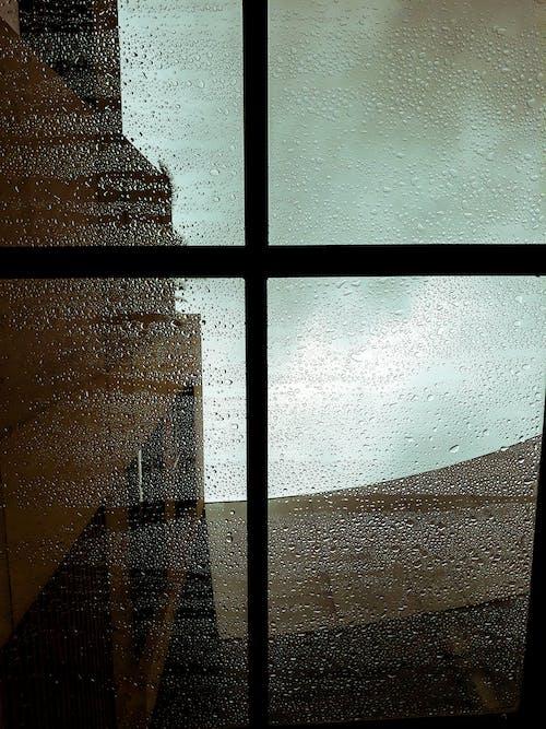 Imagine de stoc gratuită din picături de ploaie, stropi de apă, ud