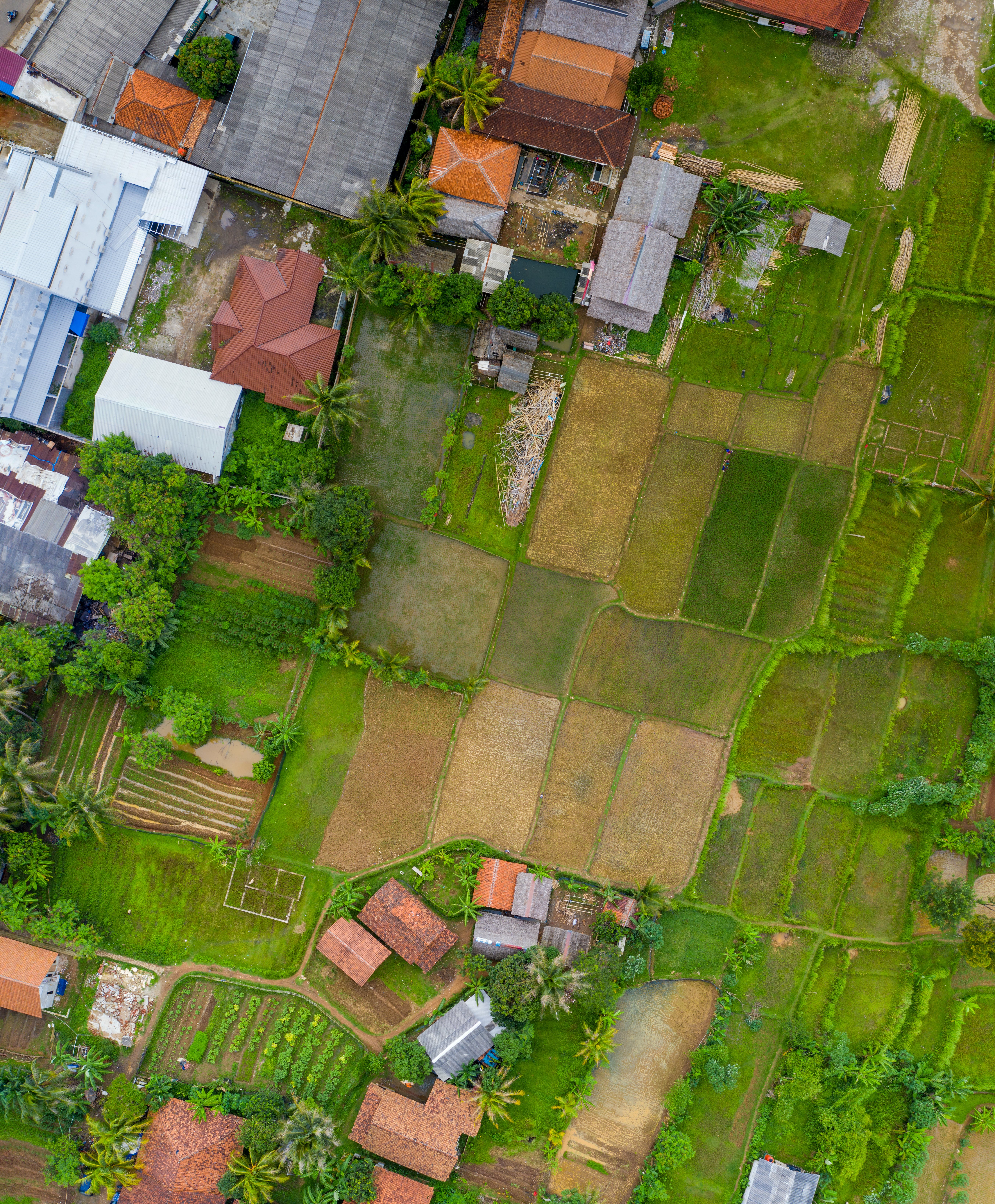 Aerial View Of Field And Houses