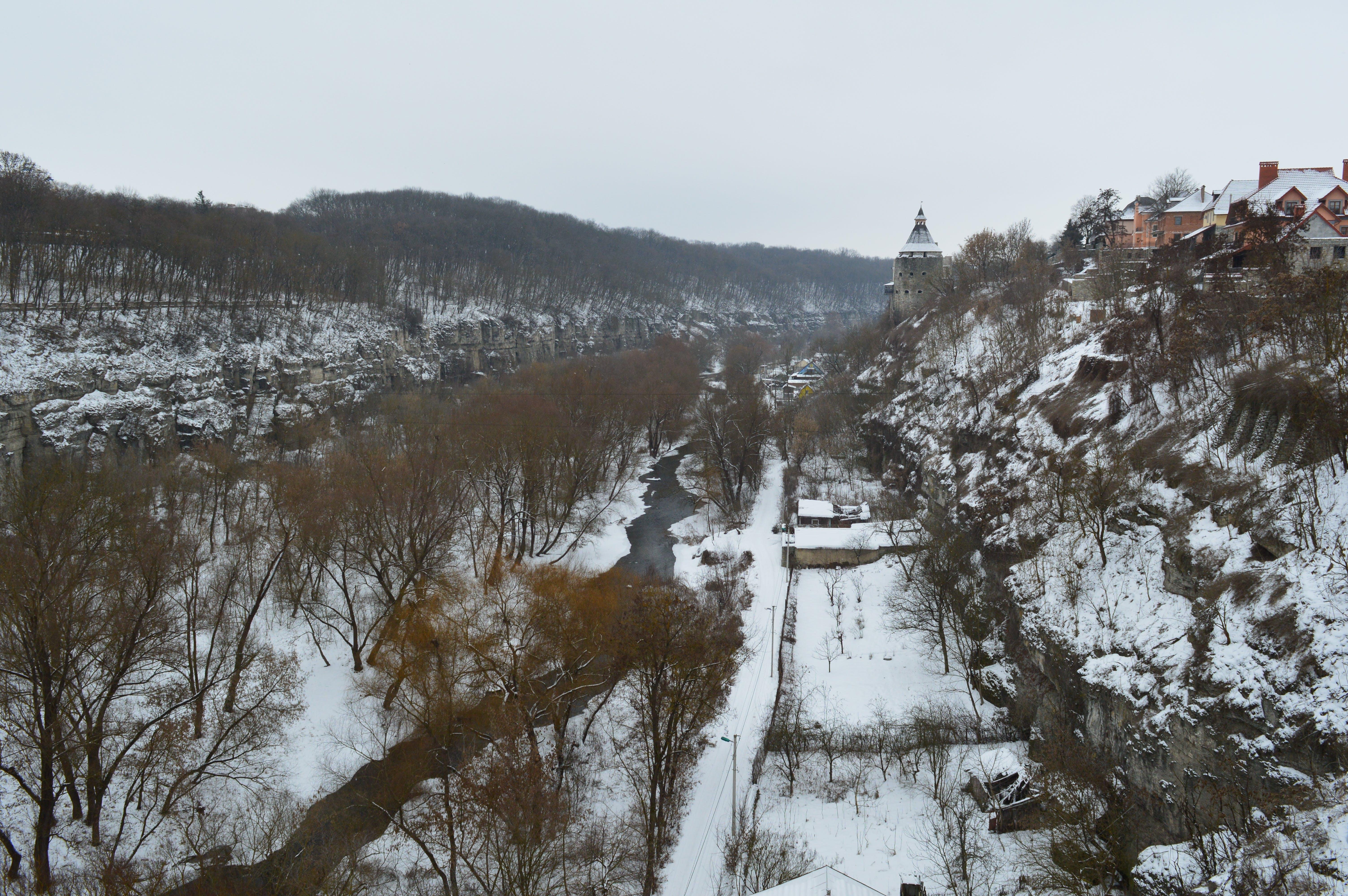 Free stock photo of canyon, travel, trees, ukraine