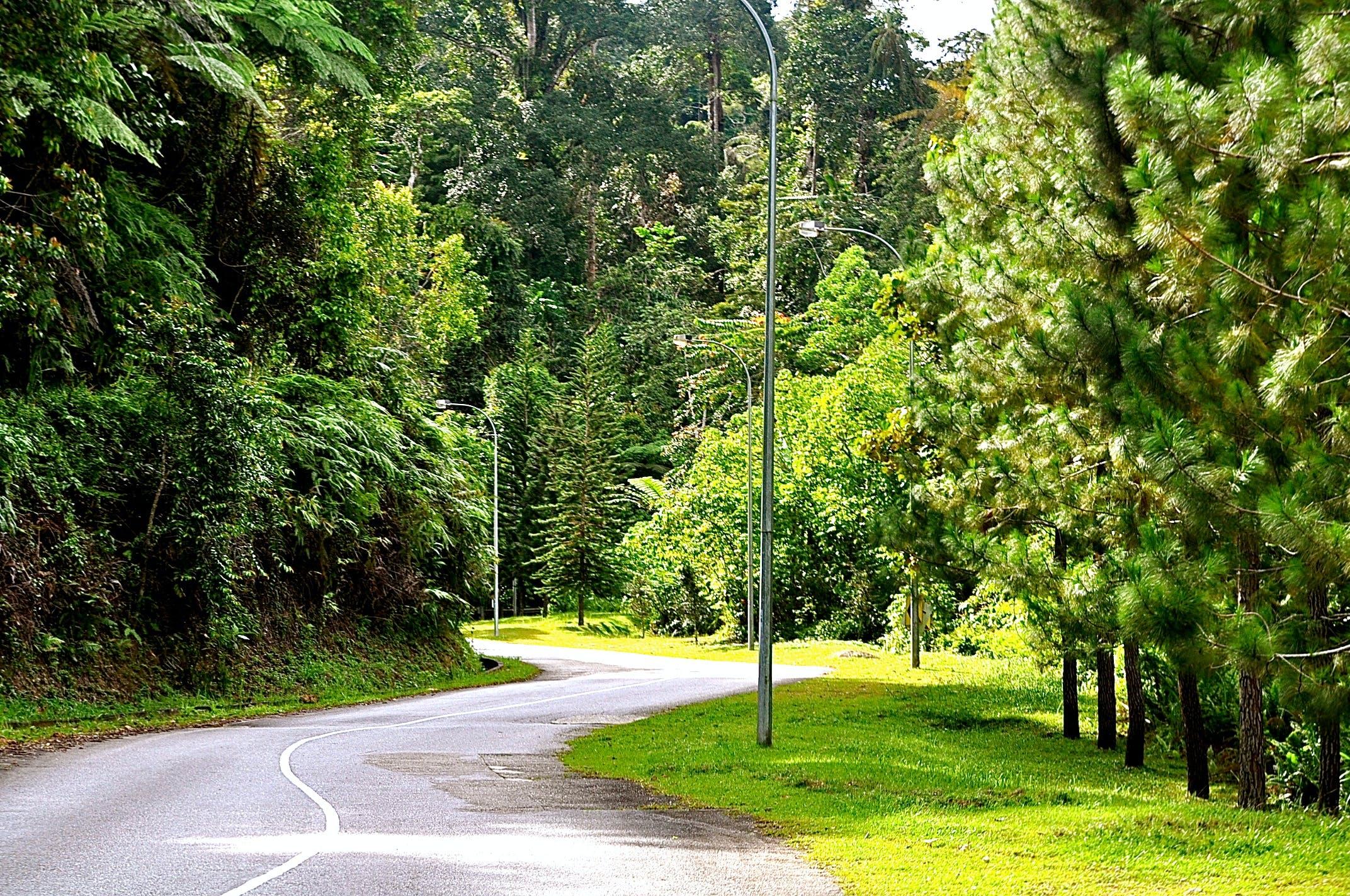 Free stock photo of Putrajaya Malaysia