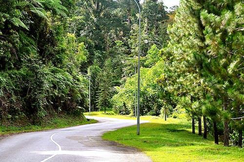 Kostnadsfri bild av putrajaya malaysia