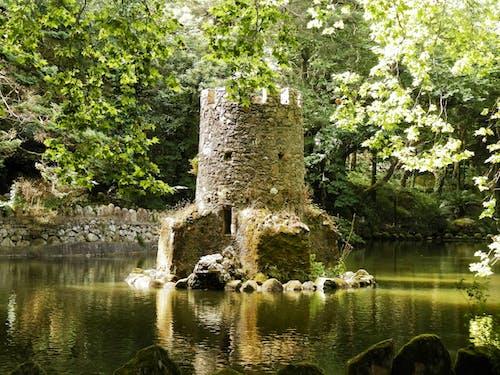 城堡, 建造, 景觀 的 免費圖庫相片
