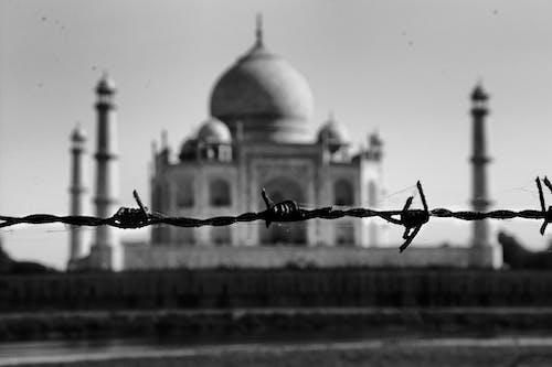Immagine gratuita di amore, catena, diverso, guerra
