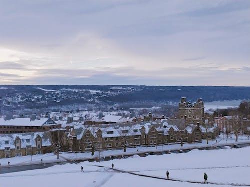 Photos gratuites de bâtiments, cornell, couvert de neige, neige