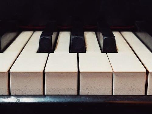 Gratis arkivbilde med musikk, piano, svart-hvitt