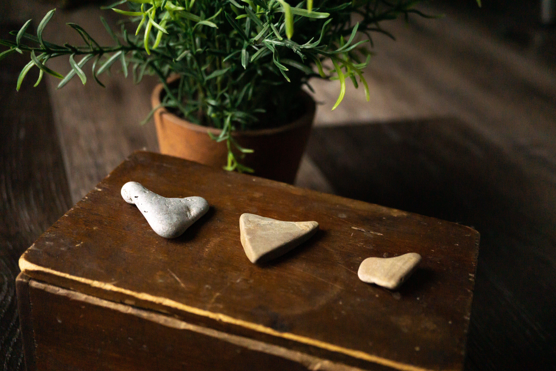 바위, 보물, 보물 상자, 사랑의 무료 스톡 사진