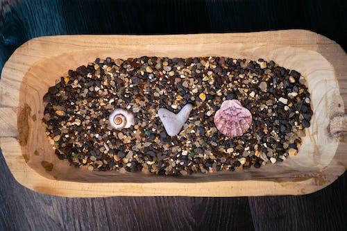 Darmowe zdjęcie z galerii z drewno, miska, miłość, muszla