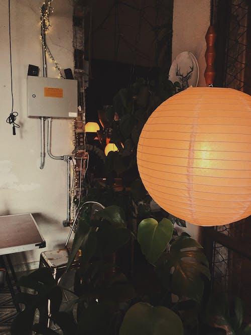 インドア, ランプ, ルーム, 光の無料の写真素材