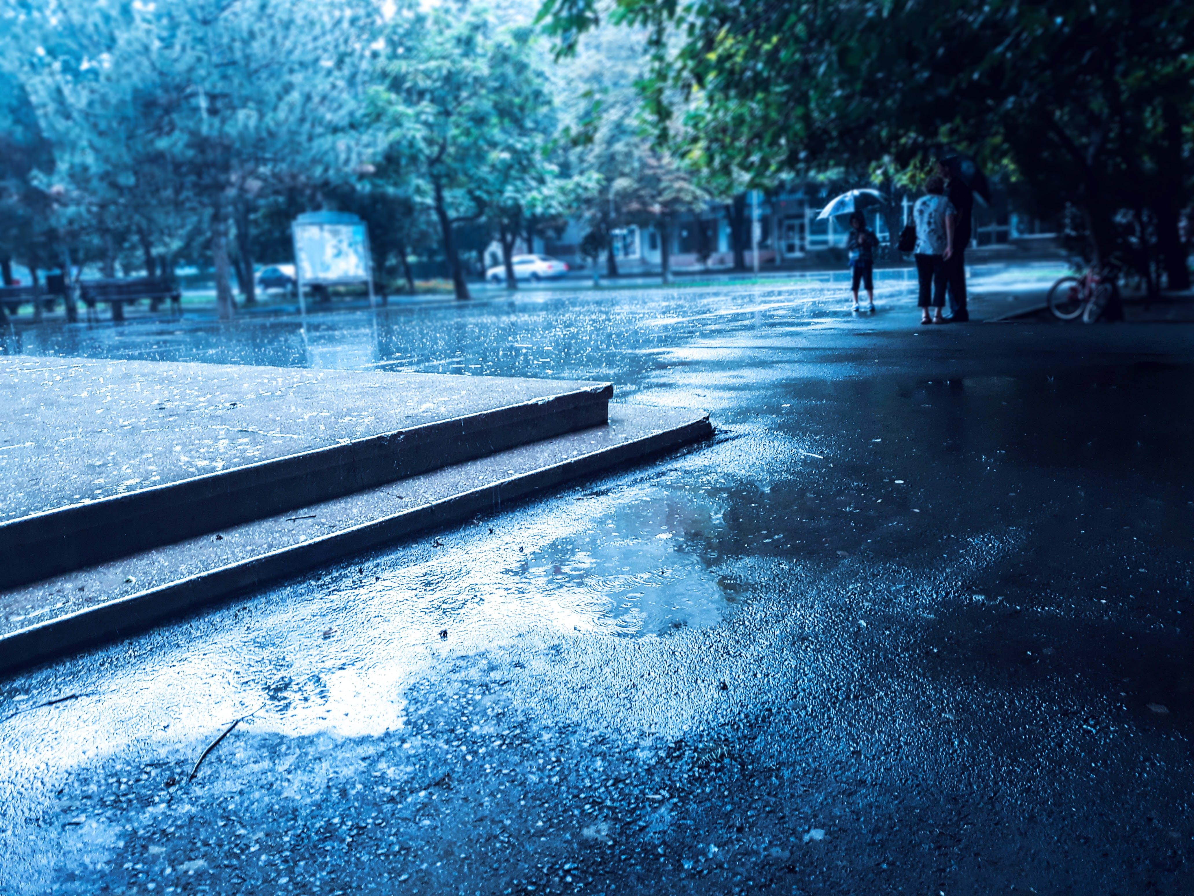 Free stock photo of drops, people, rain