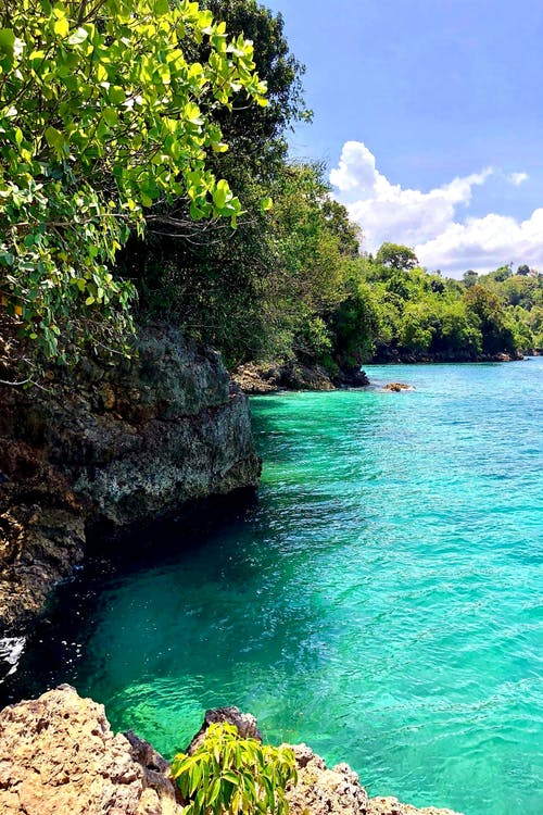 #indonesia #jakarta #scuba #diving #ocean island 的 免費圖庫相片