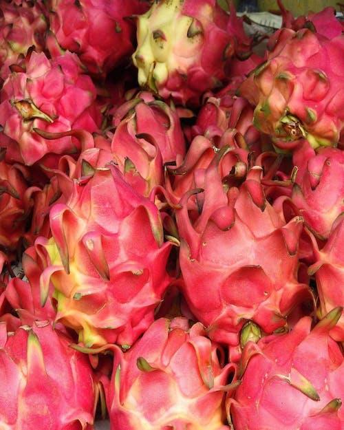 #indonesia #jakarta #dragon fruit #pink 的 免費圖庫相片