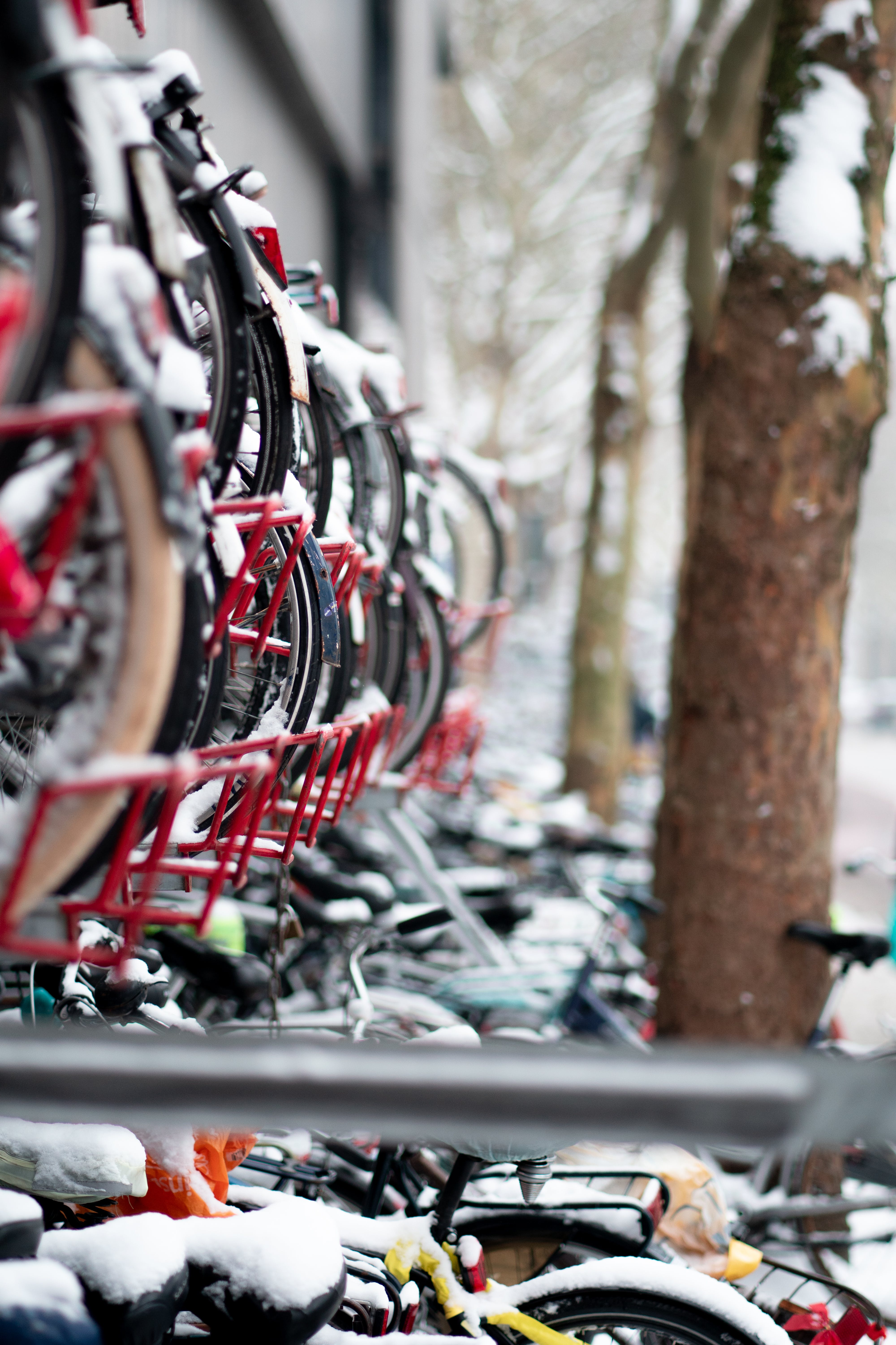 Free stock photo of bike, bike rack, bike storage, bikes