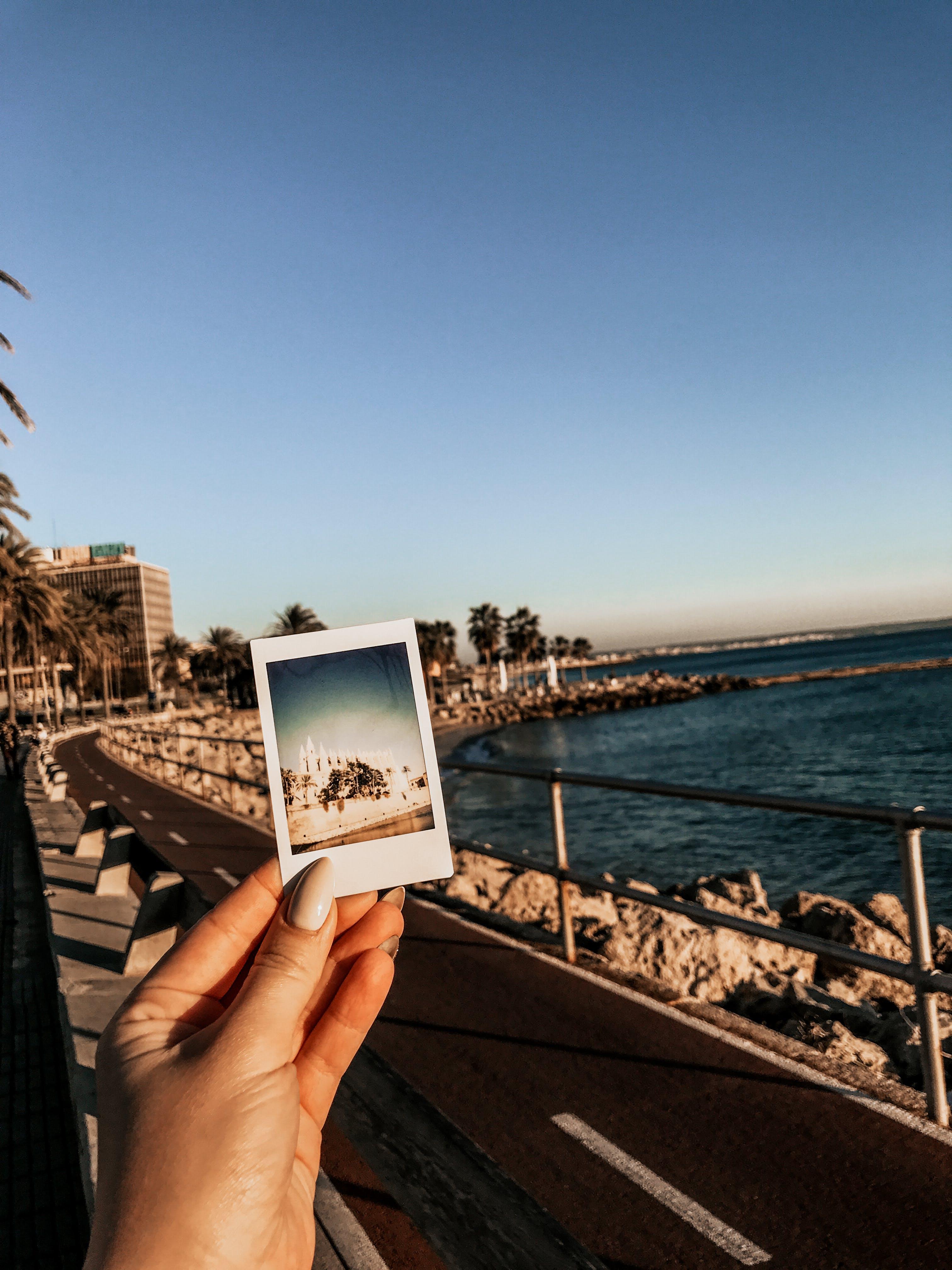 Darmowe zdjęcie z galerii z polaroid, ręka, zdjęcie