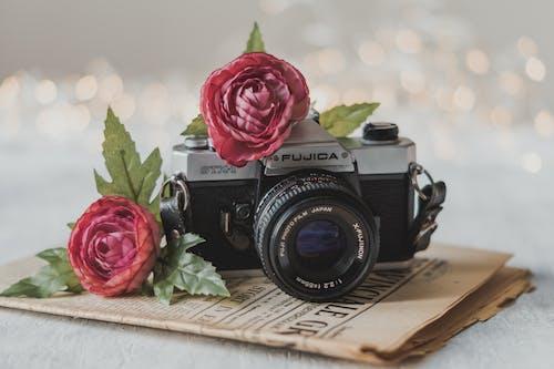 Foto profissional grátis de aparelho, atraente, bokeh, borrão
